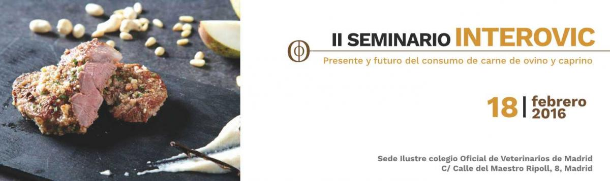 II Seminario INTEROVIC